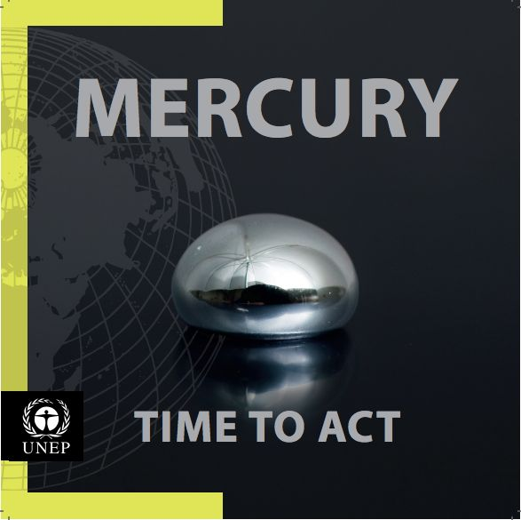 UNEP mercury report